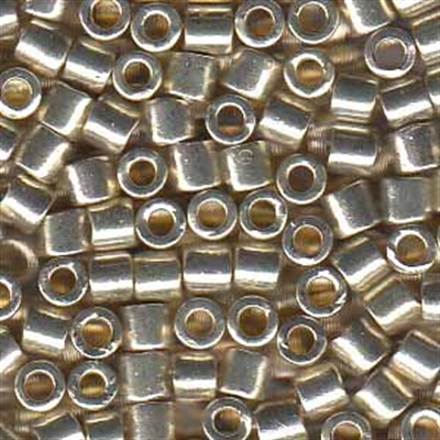 Picture of Miyuki Delica Seed Beads | 8/0 - DBL-1831 (M) DURACOAT Galvanized Silver (5 g.)